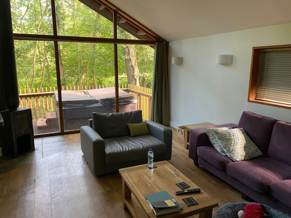 Forest Holidays Golden Oak cabin - Lounge and hot tub